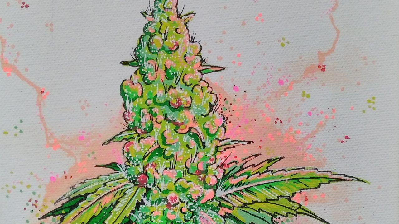 https://cbdguideaustria.com/wp-content/uploads/2018/01/cannabis-kunst-01-1280x720.jpg