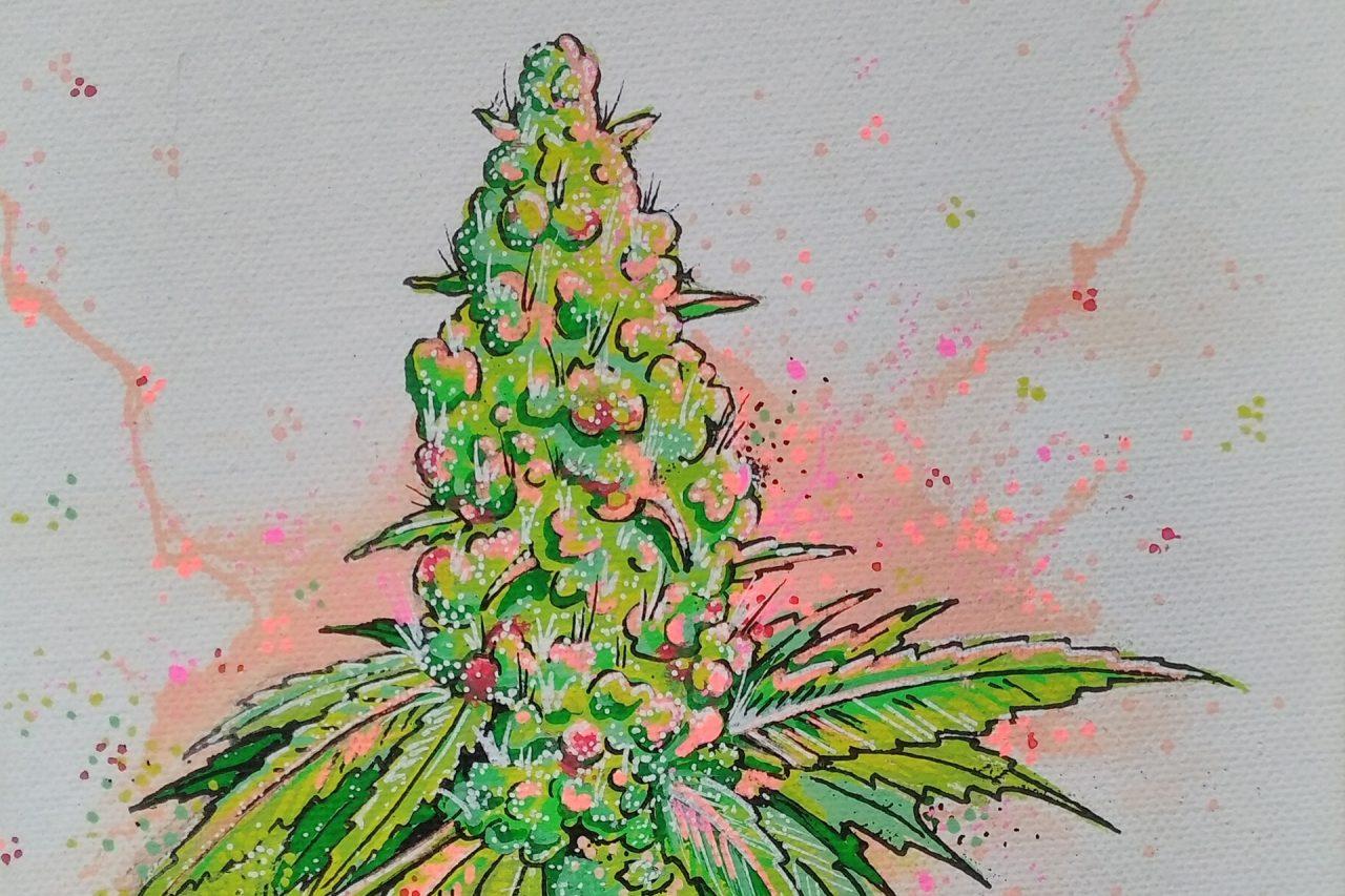 https://cbdguideaustria.com/wp-content/uploads/2018/01/cannabis-kunst-01-1280x853.jpg