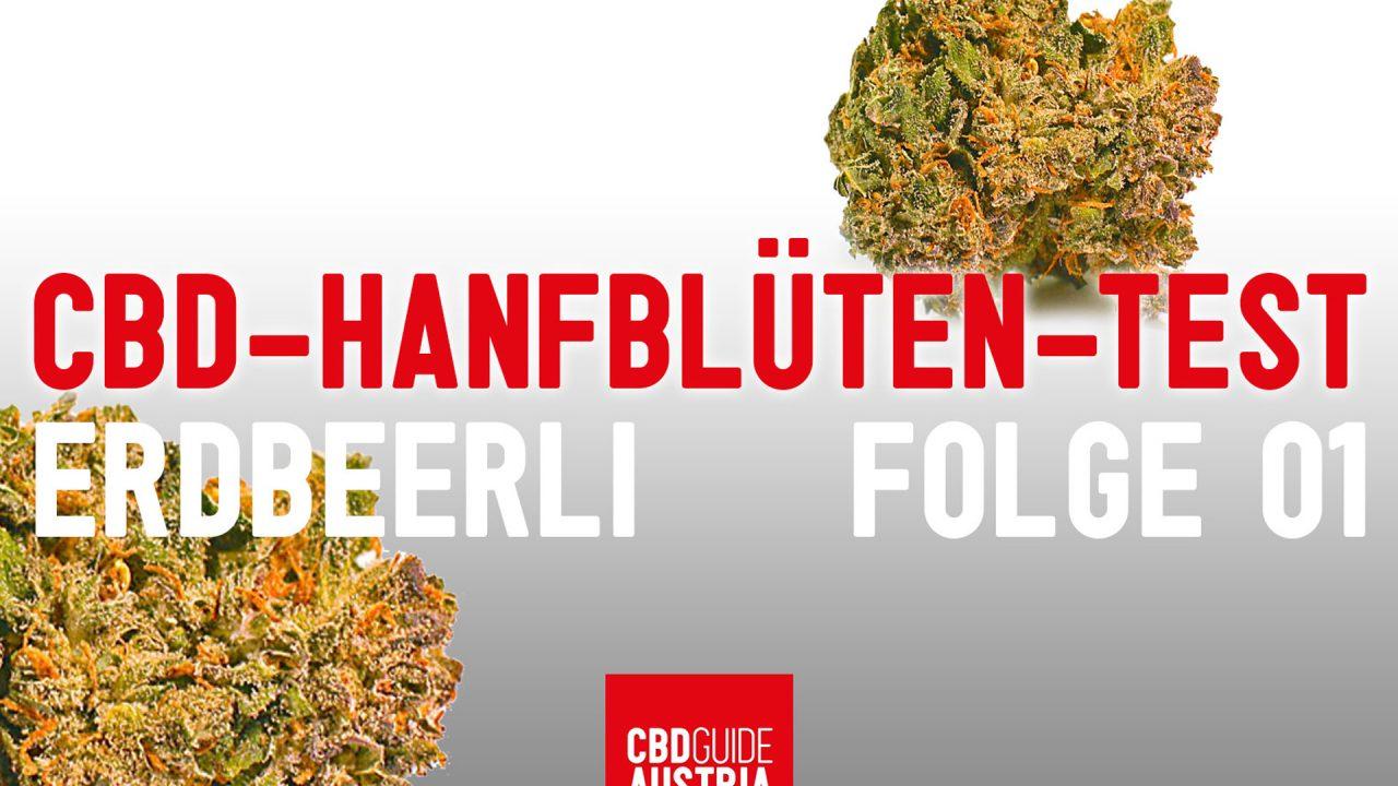 https://cbdguideaustria.com/wp-content/uploads/2018/06/cbd-hanfblueten-test-erdbeerli-cia-tv-1280x720.jpg